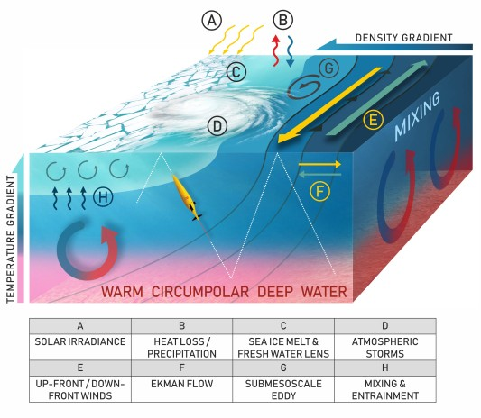 Ocean_processes