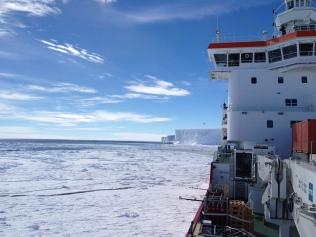 Ice shelf views from ship