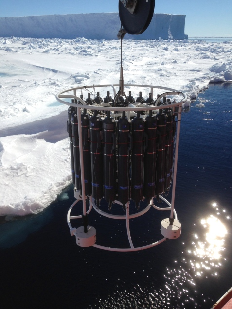 Sea ice CTD