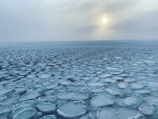 Pancake ice was forming during the cruise